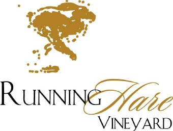 Yoga for You at Running Hare Vineyard