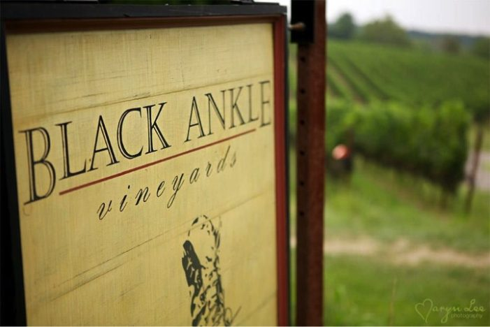 Black Ankle Vineyards