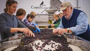 Crow Vineyard and Winery