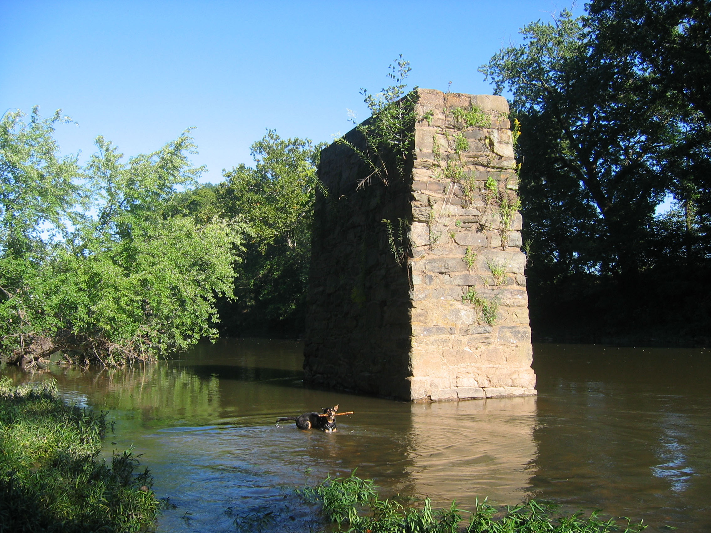 Links Bridge Vineyards