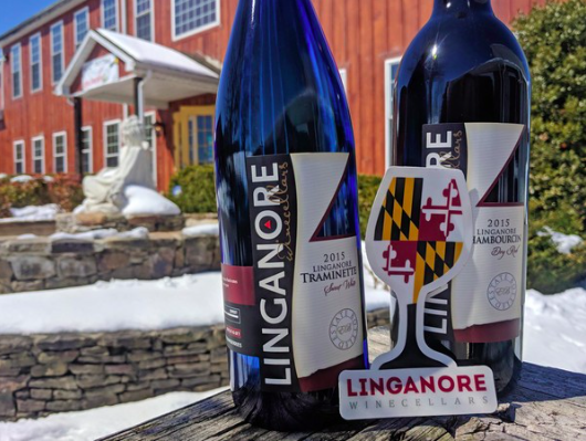 """Linganore, one of East Coast's oldest wineries, making generational shift"" – Penn Live"