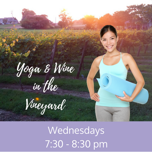 Yoga & Wine in the Vineyard