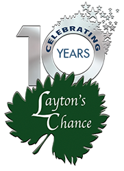 """Layton's Chance marks 10 years, wins accolades"" – Salisbury Independent"