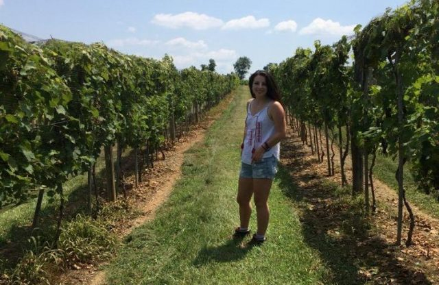 """Many Generations of Pyment and Cysers at Loew Vineyards"" – Lancaster Farming"