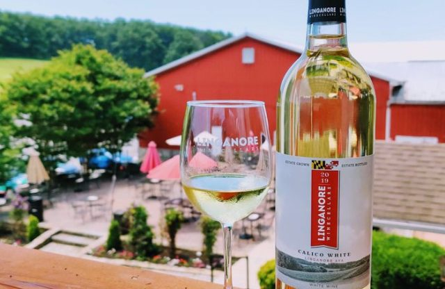 """""""What is Wanderland? The new Maryland wine event gets rolled out next weekend."""" – PennLive.com"""